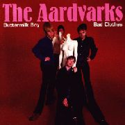 AARDVARKS - BUTTERMILK BOY