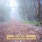 SUBARACHNOID SPACE - A NEW AND EXACT MAP