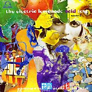VARIOUS - ELECTRIC LEMONADE ACID TEST, VOL. 2