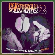 VARIOUS - PSYCHEDELIC SCHLEMIELS, VOL. 2