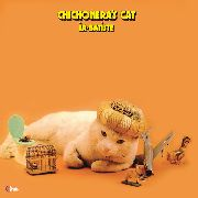 IA-BATISTE - CHICHONERA'S CAT