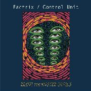 "FACTRIX/CONTROL UNIT - ELEGY FOR RUSTED SOULS (+7"")"