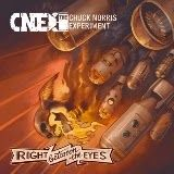 CHUCK NORRIS EXPERIMENT - RIGHT BETWEEN THE EYES