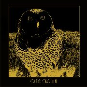 OLDE GROWTH - THE OWL