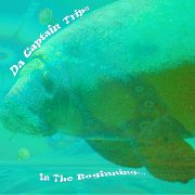 DA CAPTAIN TRIPS - IN THE BEGINNING (BLACK)