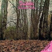 TWINK - THINK PINK (MONO & STEREO VERSIONS) (2CD)