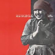 YELLOW MAGIC ORCHESTRA - TECHNODELIC (NL)