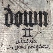 DOWN - DOWN II: A BUSTLE IN YOUR HEDGEROW (2LP)
