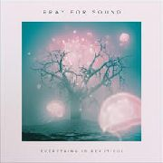 PRAY FOR SOUND - EVERYTHING IS BEAUTIFUL (2LP)
