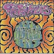 OZRIC TENTACLES - AT THE PONGMASTERS BALL (+DVD)