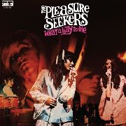 PLEASURE SEEKERS - WHAT A WAY TO DIE