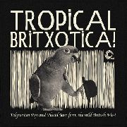 VARIOUS - TROPICAL BRITXOTICA!