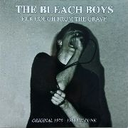BLEACH BOYS - FUR COUGH FROM THE GRAVE