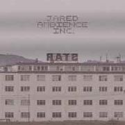 JARED AMBIENCE INC. - RATS