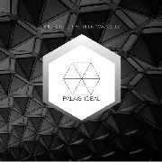 "PALAIS IDEAL - THE FUTURE HAS BEEN CANCELLED (10"")"