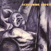 SCREAMING TREES - DUST (2CD)