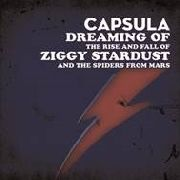 CAPSULA - DREAMING OF THE RISE AND FALL...