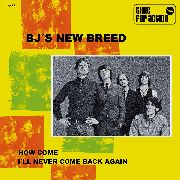 BJ'S NEW BREED - HOW COME