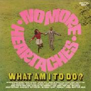 VARIOUS - NO MORE HEARTACHES/WHAT AM I TO DO?