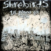 SHOREBIRDS - IT'S GONNA GET UGLY