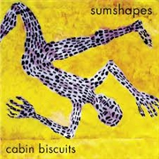 SUMSHAPES - CABIN BISCUITS