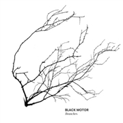 BLACK MOTOR - BRANCHES