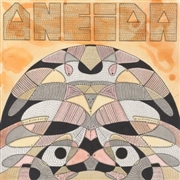 ONEIDA - LIVE AT SECRET PROJECT ROBOT (2LP)