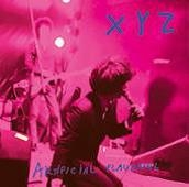 XYZ - ARTIFICIAL FLAVORING