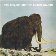 KING GIZZARD & THE LIZARD WIZARD - POLYGONDWANALAND (UK)