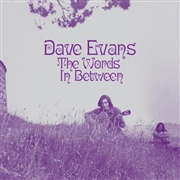 EVANS, DAVE (UK) - WORDS IN BETWEEN