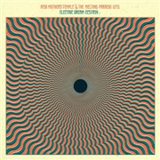 ACID MOTHERS TEMPLE & THE MELTING PARAISO U.F.O. - ELECTRIC DREAM ECSTASY