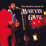 GAYE, MARVIN - THE SOULFUL SOUNDS OF MARVIN GAYE-SEXUAL HEALING
