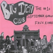 VARIOUS - BIG ITCH CLUB