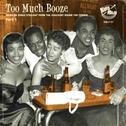 VARIOUS - TOO MUCH BOOZE