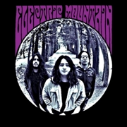 ELECTRIC MOUNTAIN - ELECTRIC MOUNTAIN (PURPLE)