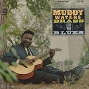 WATERS, MUDDY - MUDDY BRASS & THE BLUES