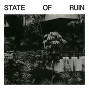 SILK ROAD ASSASSINS - STATE OF RUIN (2LP)