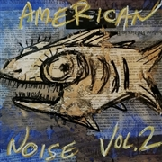 VARIOUS - AMERICAN NOISE, VOL. 2