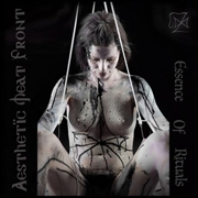 AESTHETIC MEAT FRONT - ESSENCE OF RITUALS