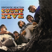 COUNT FIVE - PSYCHOTIC REACTION (IT)