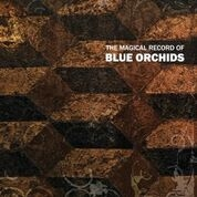 BLUE ORCHIDS - MAGICAL RECORD OF BLUE ORCHIDS