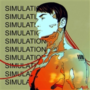 ALEX - SIMULATIONS