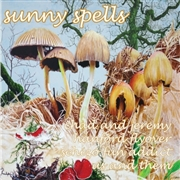 VARIOUS - SUNNY SPELLS (YELLOW)