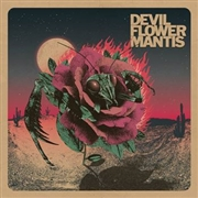 DEVIL FLOWER MANTIS - (BLACK) DEVIL FLOWER MANTIS