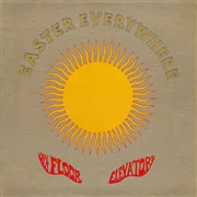 13TH FLOOR ELEVATORS - (USA/180GR/BLACK) EASTER EVERYWHERE