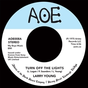 YOUNG, LARRY - TURN OFF THE LIGHTS/FUEL THE FIRE