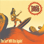 BAJA BUG - THE SURF WILL RISE AGAIN