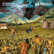 FLOWERS IN CONCRETE/DIM PROSPECTS - SPLIT