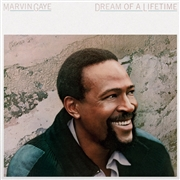 GAYE, MARVIN - DREAM OF A LIFETIME